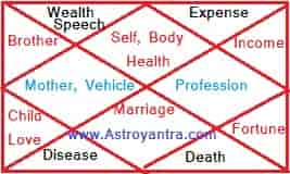 Astrological Houses Significator in Vedic astrology