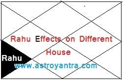 राहु का विभिन्न भाव में फल   Rahu Effects on Different Houses.