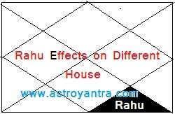 राहु का विभिन्न भाव में फल   Rahu Effects on Different Houses